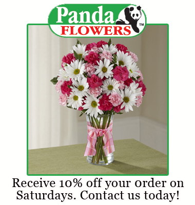 Southtrail Panda Flowers provides exceptional flloral and gift delivery citywide in Calgary and surrounding area. We offer a large variety of fresh flowers ...